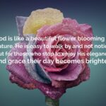 Beautiful Flower Quotes And Sayings Pinterest