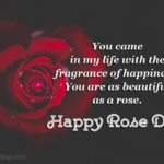 Beautiful Rose Day Images Facebook