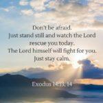 Best Bible Verses For Motivation Twitter