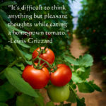 Food Of Thought Quotes