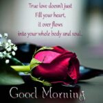 Good Morning Beautiful Quotes For Her Twitter