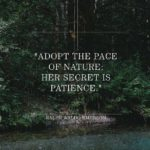 Ralph Waldo Emerson Famous Quotes Pinterest