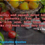 Squash Vegetable Quotes Pinterest
