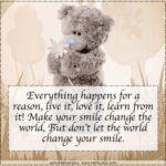 Teddy Bear Phrases Facebook