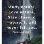 Uplifting Nature Quotes Pinterest